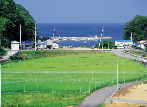 Minami Sanrikucho, Miyagi Prefecture, Japan