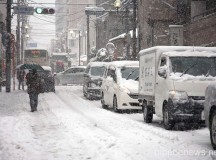 Tokyo's First Snowfall in 2013