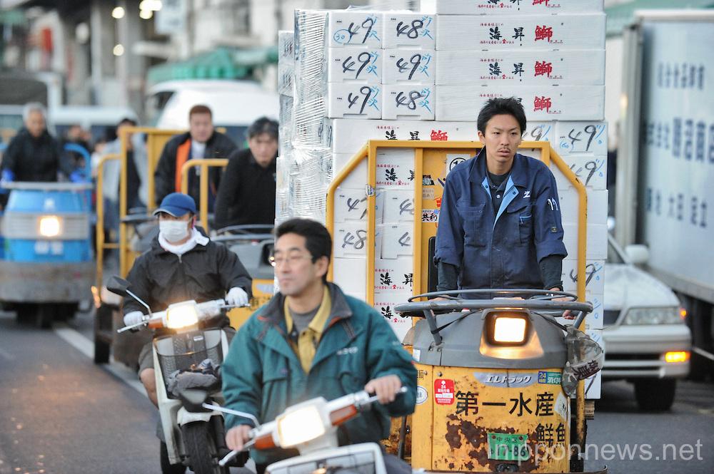 Feature - Tsukiji Fish Market