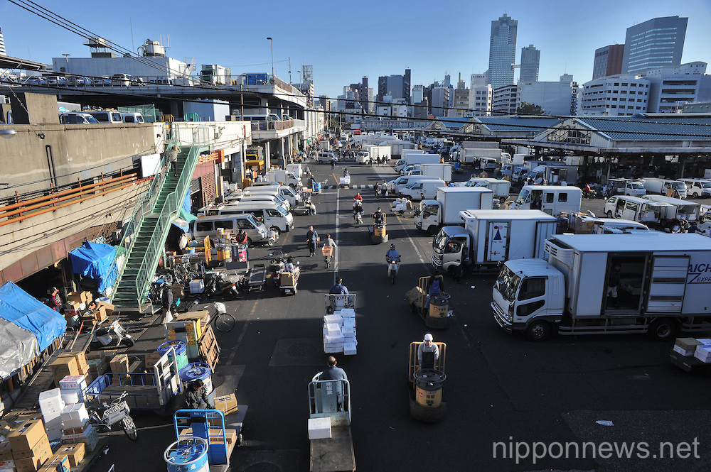 A Look into Tsukiji Fish Market