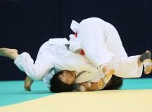 All Japan Selected Judo Championships 2013
