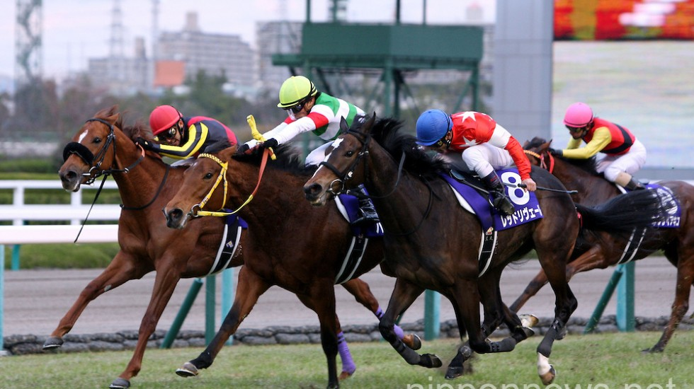 Hanshin Juvenile Fillies