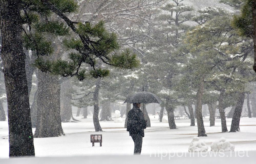 February 14 Snowfall in Tokyo