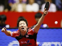 2014 World Team Table Tennis Championships