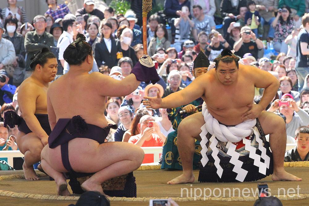 Sumo Wrestling at Yasukuni Shrine