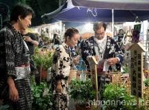 Iriya Asagao-ichi Market Festival