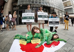 PETA Protests Hermes Treatment of Crocodiles