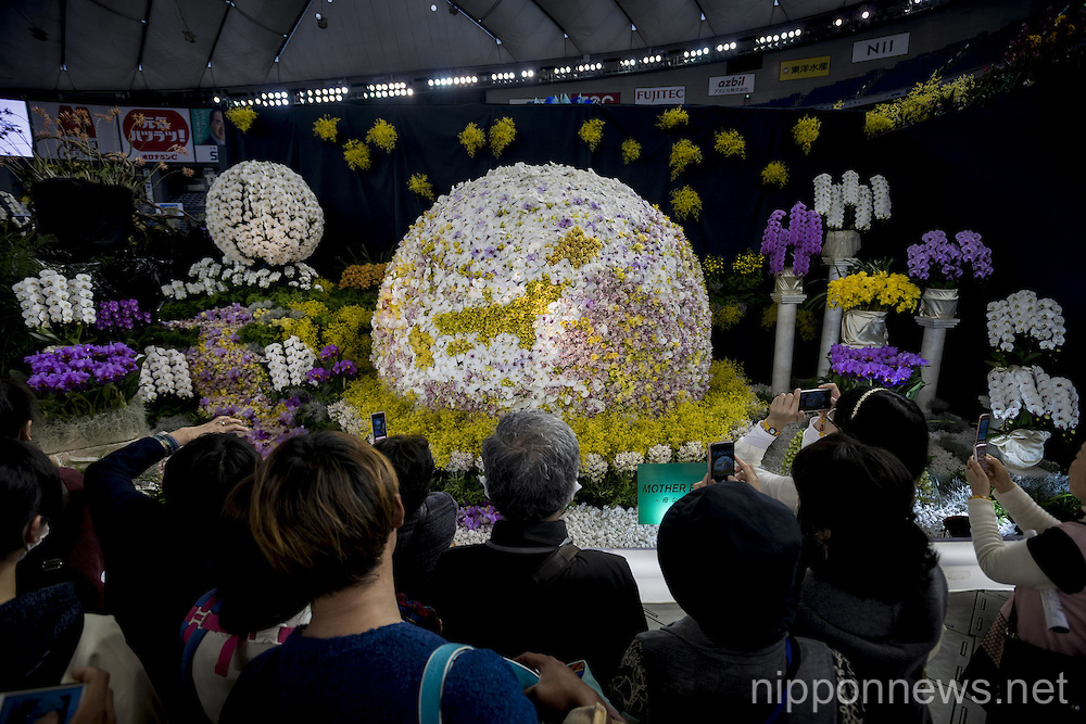 Japan International Orchid Festival 2016
