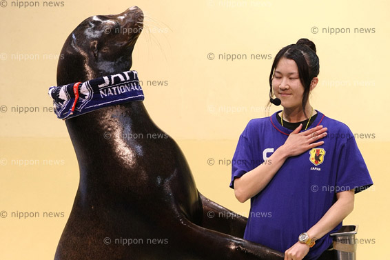 'Baron' the sea lion plays football'Baron' the sea lion plays footballアシカのバロンくん、日本チーム初戦勝利を願う