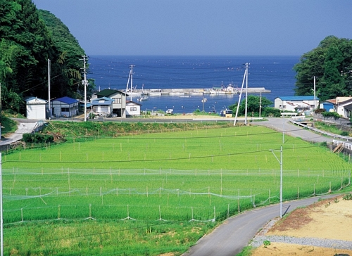 Japan Earthquake – BeforeJapan Earthquake – BeforeJapan Earthquake – Before