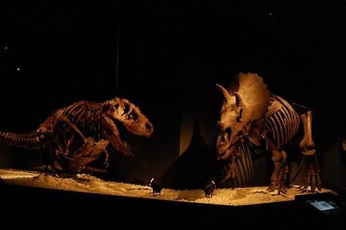 The Dinosaur Expo 2011The Dinosaur Expo 2011恐竜博 2011