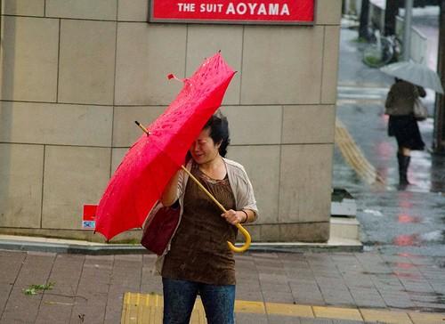 Typhoon No. 15 Roke Hits Japan台風15号、関東地方直撃 首都圏交通の足乱れる