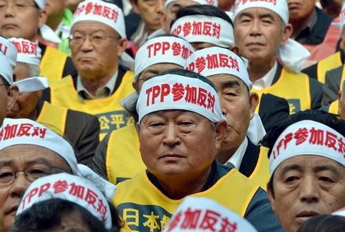 Anti-Trans-Pacific Partnership RallyTPP交渉参加に反対 農業団体が大規模集会