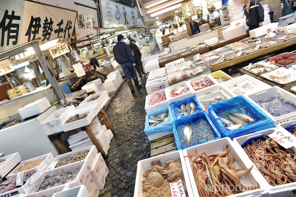 Feature - Tsukiji Fish Market