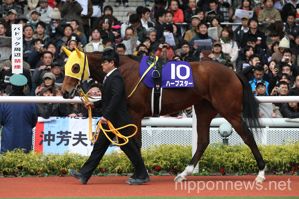 Horse racing: Hanshin Juvenile Fillies