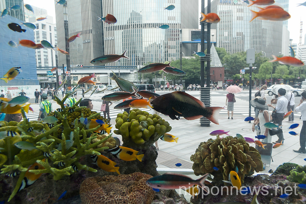 Sony Sets Up a Temporary Aquarium in Ginza