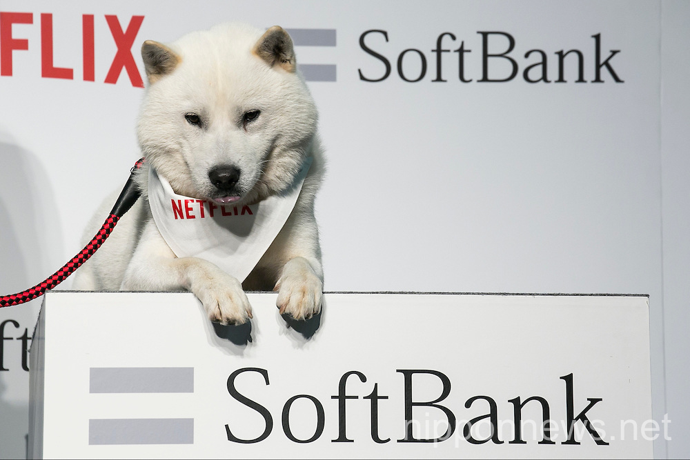 SoftBank to distribute Netflix exclusively in Japan