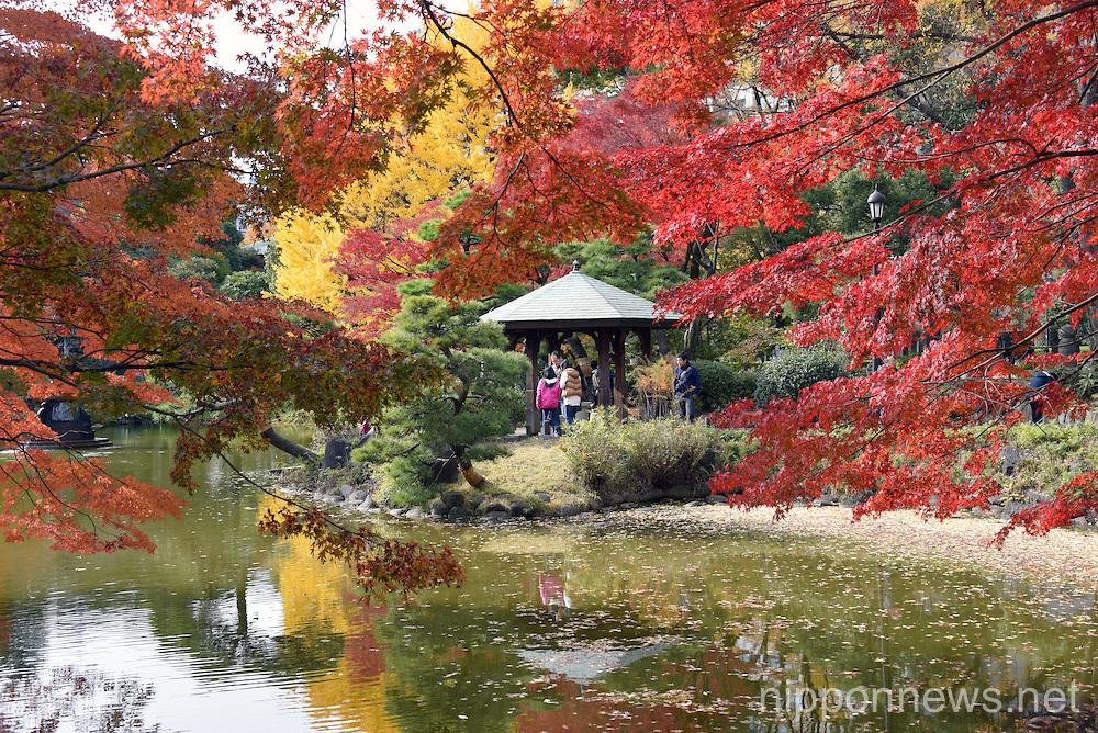 Autumn leaves at Tokyo's Hibiya Park