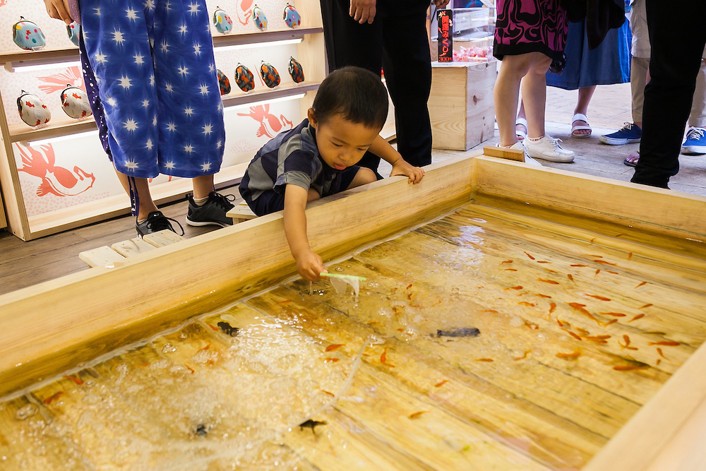 Goldfish scooping game in Asakusa